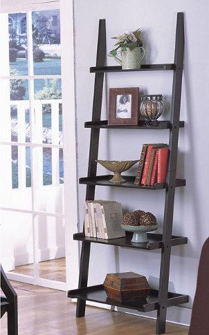 Bookshelves bookcases designs for Decor ladder shelf