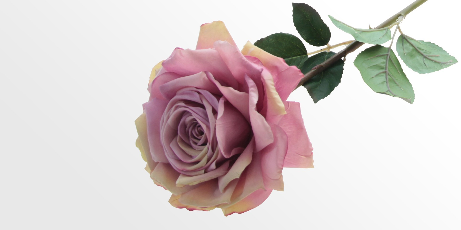 Artificial Pink Rose Faux Flowers