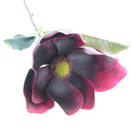 Artificial Magnolia - Burgundy